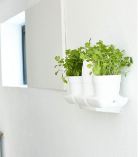 Wall Support Minigarden Basic