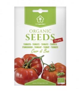 """Tomate """"Cuor di bue"""", semillas ecológica Minigarden"""