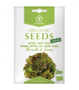 "Lechuga ""Maravilla de Verano"", semillas ecológicas Minigarden"