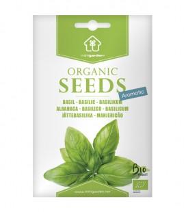 Albahaca, semillas ecológicas Minigarden