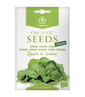 """Espinaca """"Gigante de Invierno"""", semillas ecológicas Minigarden"""